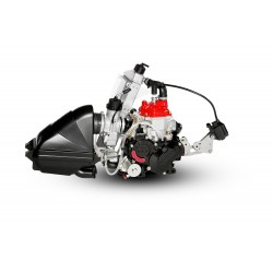 Motor ROTAX Junior Max Evo 2