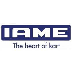 IAME X30 - Cambio Pistón y Biela
