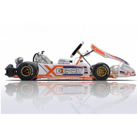 Kart Completo Exprit - Rotax Junior