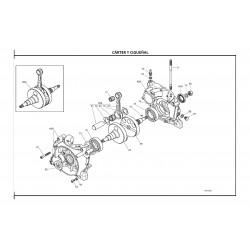 REF.061 TORNILLO CARTER M6x45 X30